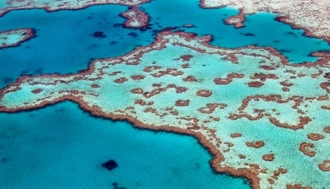 Aerial view of heart reef in whitsundays. Heart Reef is part of the Great Barrier Reef ecosystem.