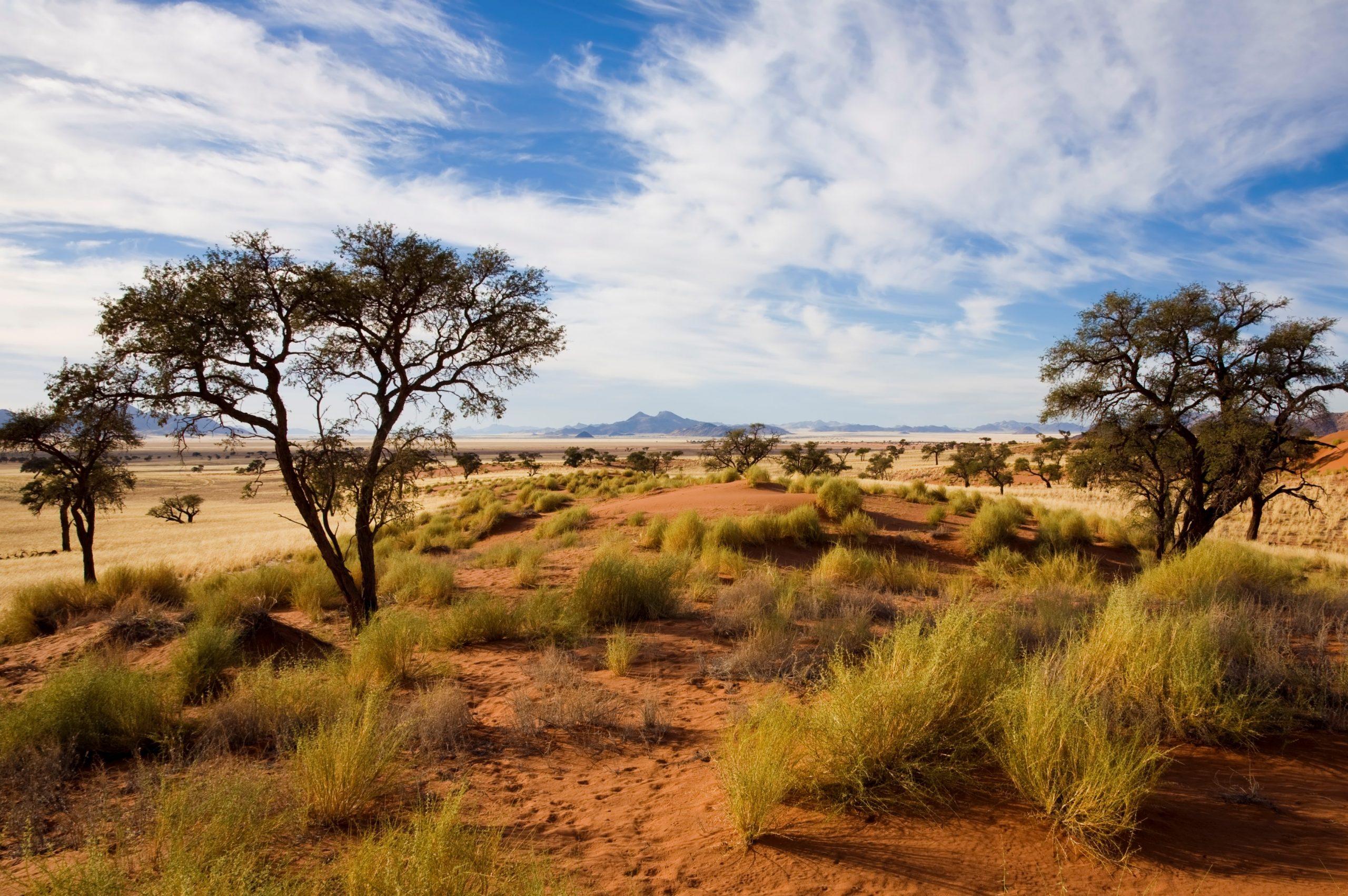 """""""Naukluft, Namibia, Afrika"""""""